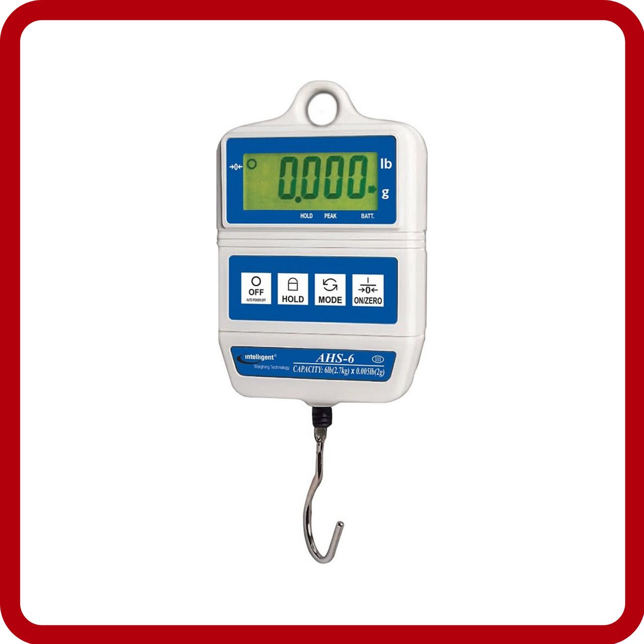 NTEP Hanging Scales