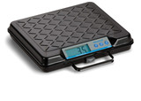 Brecknell GP250 USB Bench Scale