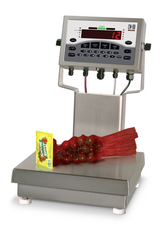 Rice Lake CW-90 Checkweighing Scale with Parts, NTEP, Class III