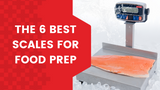 The 6 Best Scales for Food Prep