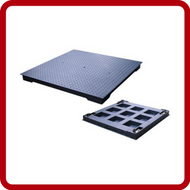 Anyload Floor Scales