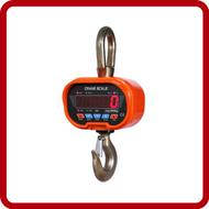 Anyload Crane Scales