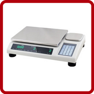 Anyload Bench Scales