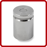 Troemner 304 Stainless Steel Weights