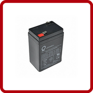 Rice Lake Batteries