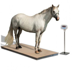 Brecknell PS3000HD Veterinary Floor Scale Weighing Horse (optional stand not included)