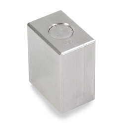 Troemner 100 g Stainless Steel Cube Weight, Traceable Certificate, NIST Class F