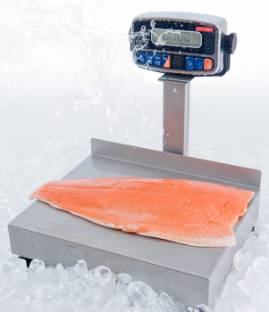 Tor Rey EQB-20/40-W Waterproof Bench Scale, 40 lb x 0.01 lb, NTEP, Class III
