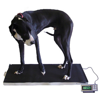 Tree LVS 700 XL Veterinary Scale