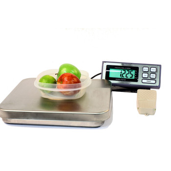 PIZA 12 bench scale