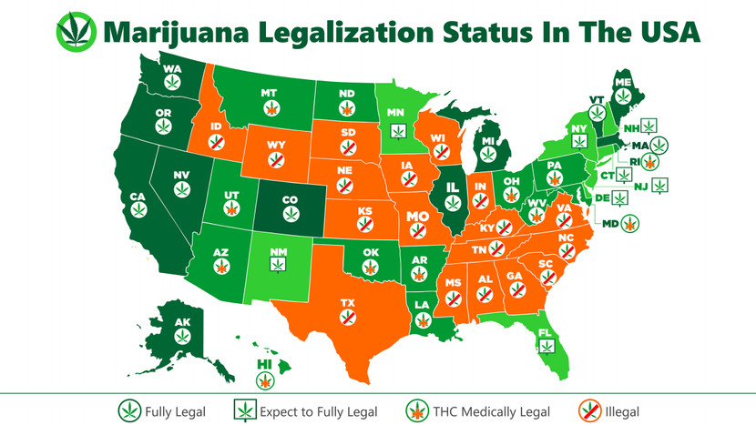 Cannabis Legality and Regulations by State