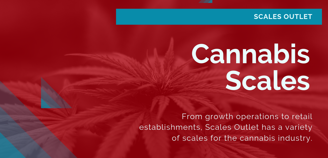From growth operations to retail establishments, Scales Outlet has a variety of scales for the cannabis industry.