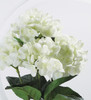 Cream Natural Touch Hydrangea Flower in Clear Glass Vase With Faux Water