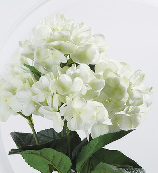 Cream Real Touch Hydrangea Bush