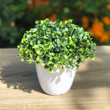 Artificial  Boxwood Grass in Round Decorative Vase
