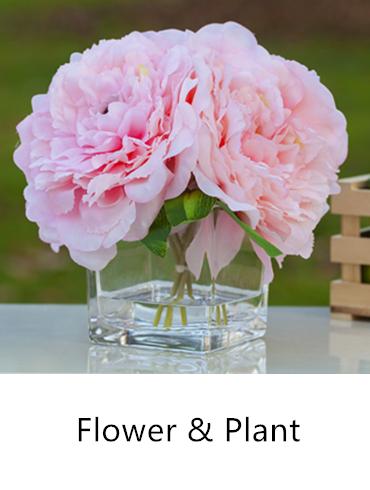 flower-plants.jpg