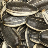 In shell raw sunflower seeds. Sold by the lb.