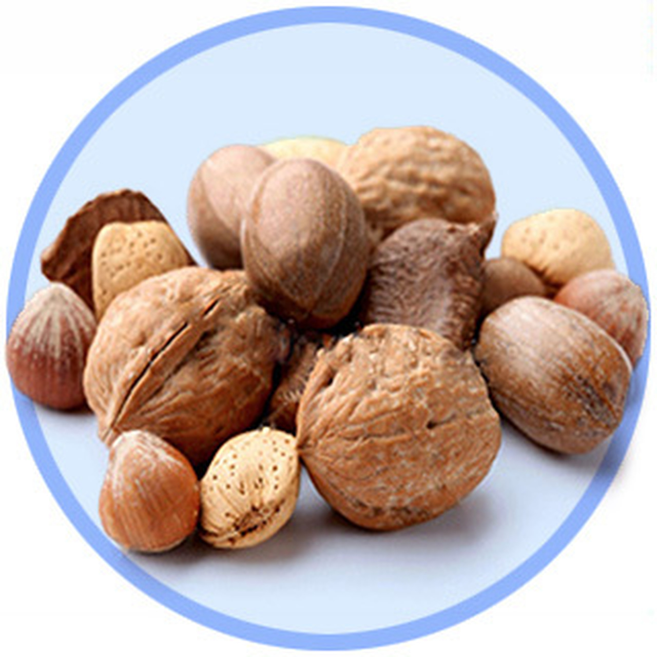 In Shell Nuts