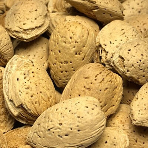 California In Shell Almonds | Raw Nuts | Sold Bulk by the Pound (LB)