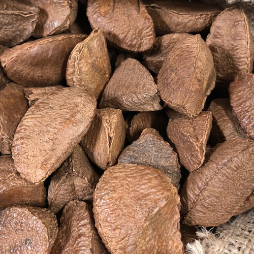 Brazil Nuts (In Shell) per lb - NEW CROP