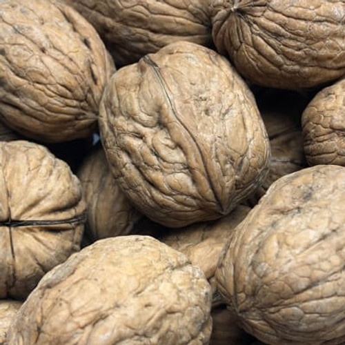 In shell English walnuts. Grown in California. Sold by the lb.