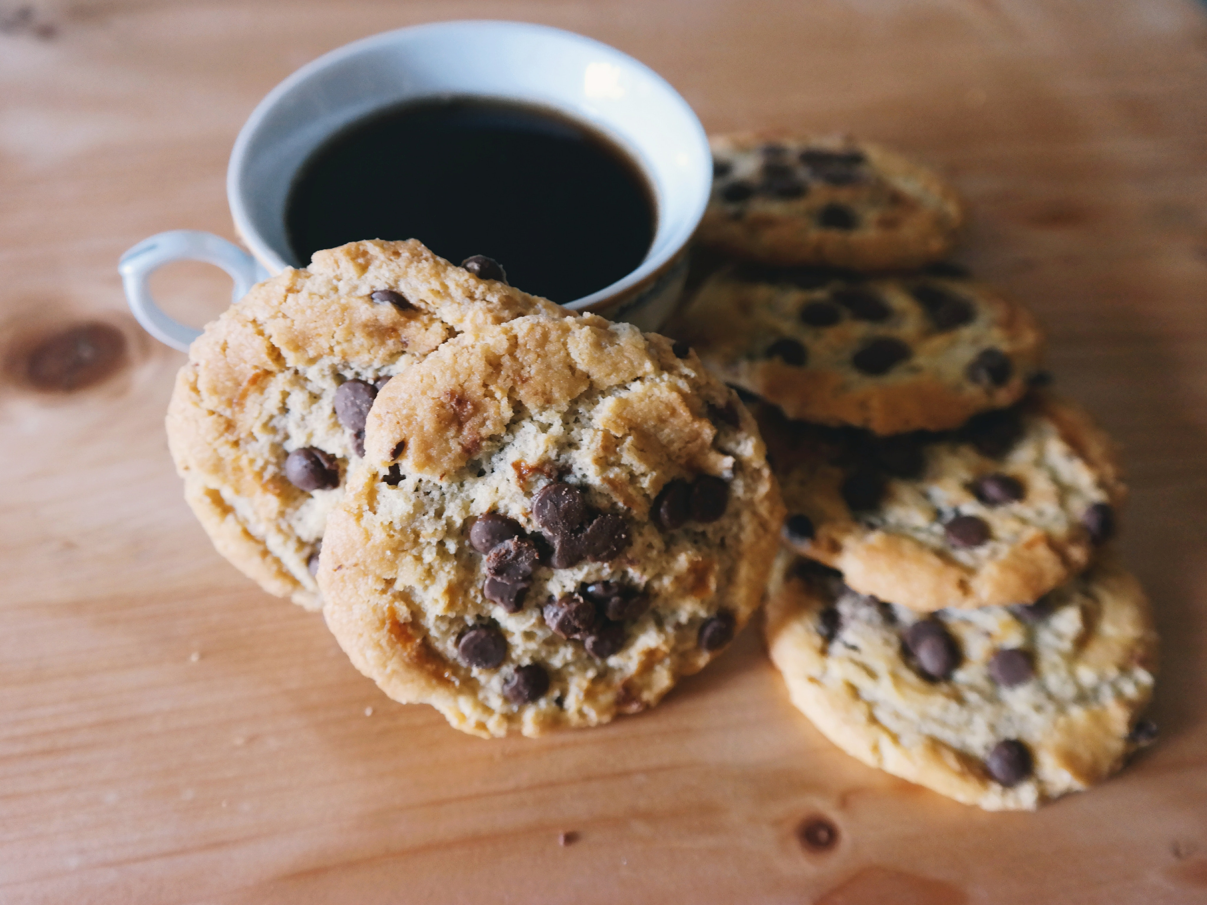 Peanut Butter Chocolate Chip Protein Cookies