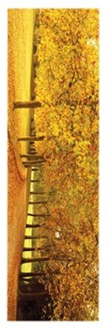 "Autumn Leaves Slim Print - 12"" X 36"""