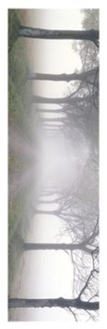 """In The Mist Slim Print - 12"""" X 36"""""""