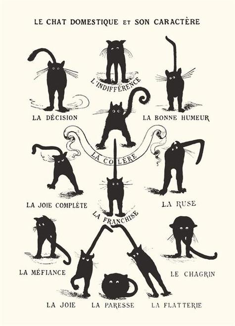 "Le Chat Domestique Mini Poster - 11"" X 14"""