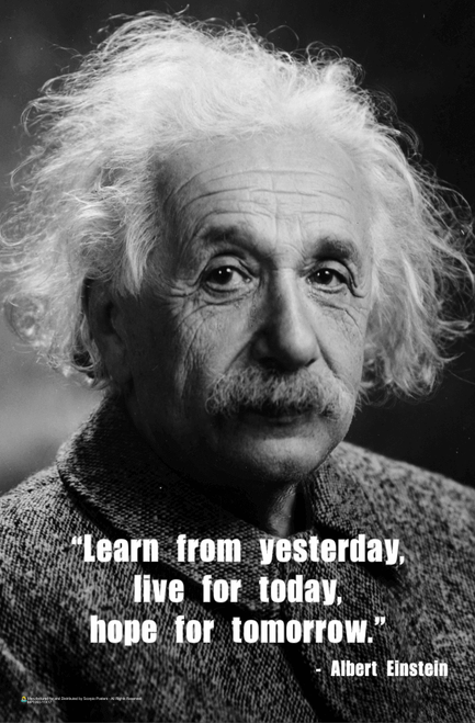 Einstein - Learn from Yesterday Mini Poster - 11x17