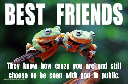 Best Friends - Tree Frogs Mini Poster - 17x11