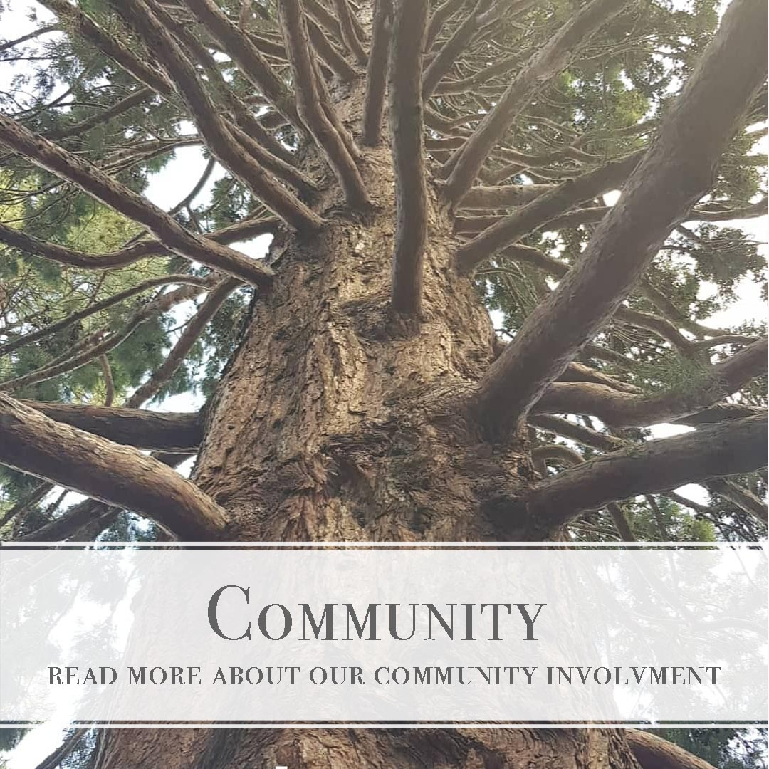 Desert Shadow community involvement, causes & contributions. We Are passionate about our environment & our community