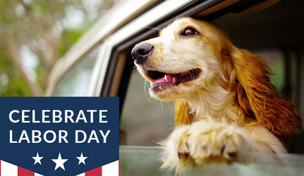 We will be closed to observe the Labor Day Holiday!