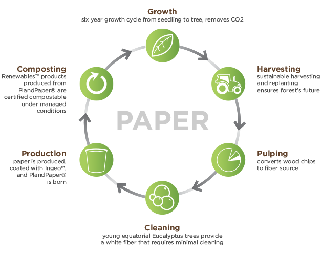 paper-cycle.png