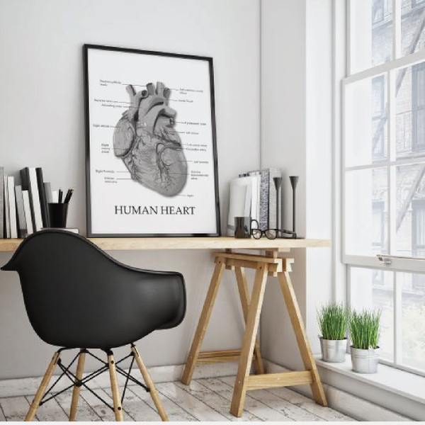 Human heart print, anatomy print, heart illustration, Anatomy poster, Educational poster, Medical poster