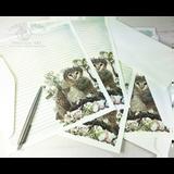Aveline Owl Letter Writing Set