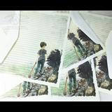 Best Buddies Boy Zombie Stationery Paper Set