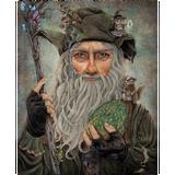 Radagast Teaches at a Magical School