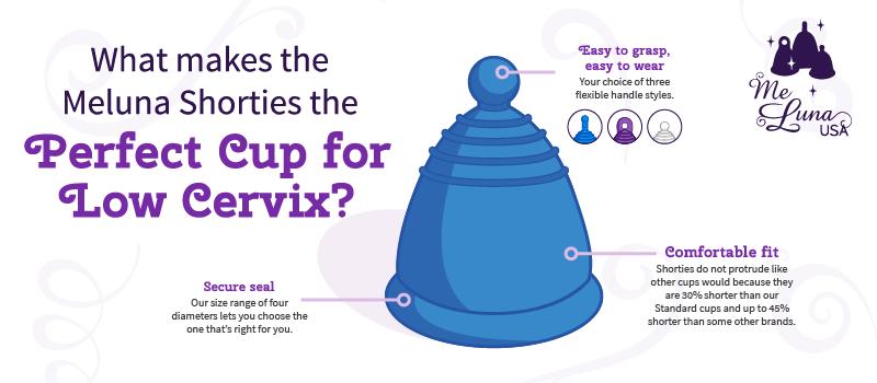 best-menstrualcup-for-lowcervix-main.png