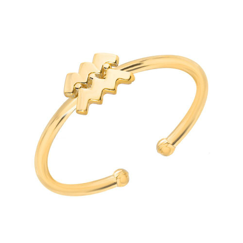Gold High Polish Trendy Zodiac Ring (Style#10813-10824)