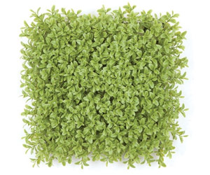 Fire Retardant Green Walls