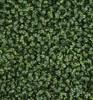 A-135460 - Close UpBoxwood MatTutone Green