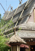 Thatch Rooftop