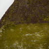 72 Inch  x 36 Inch Green and Brown Moss Mat