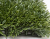 """Sideview of Boxwood Mat - 3.5"""" Height"""