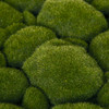 A-161590