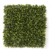 "A-174200 20"" x 20"" Polyblend Outdoor Wintergreen Boxwood"