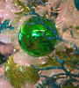 Shiny Reflective Green Ball Ornaments | 4 Inches to 20 Inches