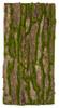 A-182130 Bark and Moss Sheet