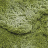 Close up of Moss Mat Greenery